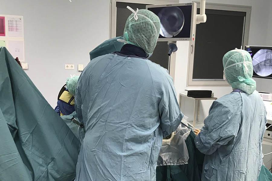 endoscopia de columna por ghasan elgeadi traumatologia