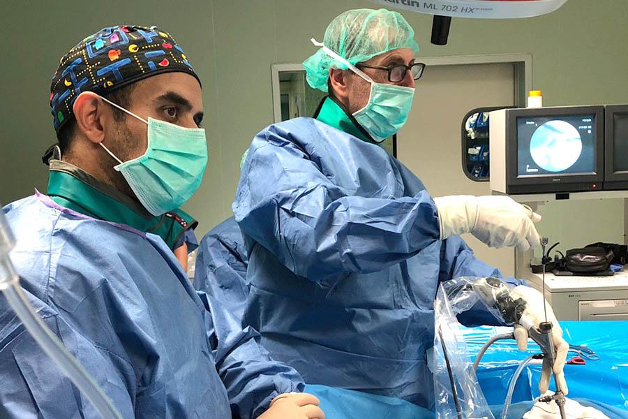 ghassan elgeadi acude como instructor de endoscopia de columna vertebral a dos hermanas