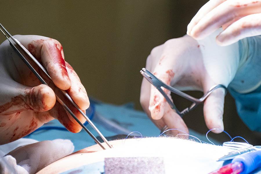 curso cirugía endoscópica en la universidad complutense de Madrid