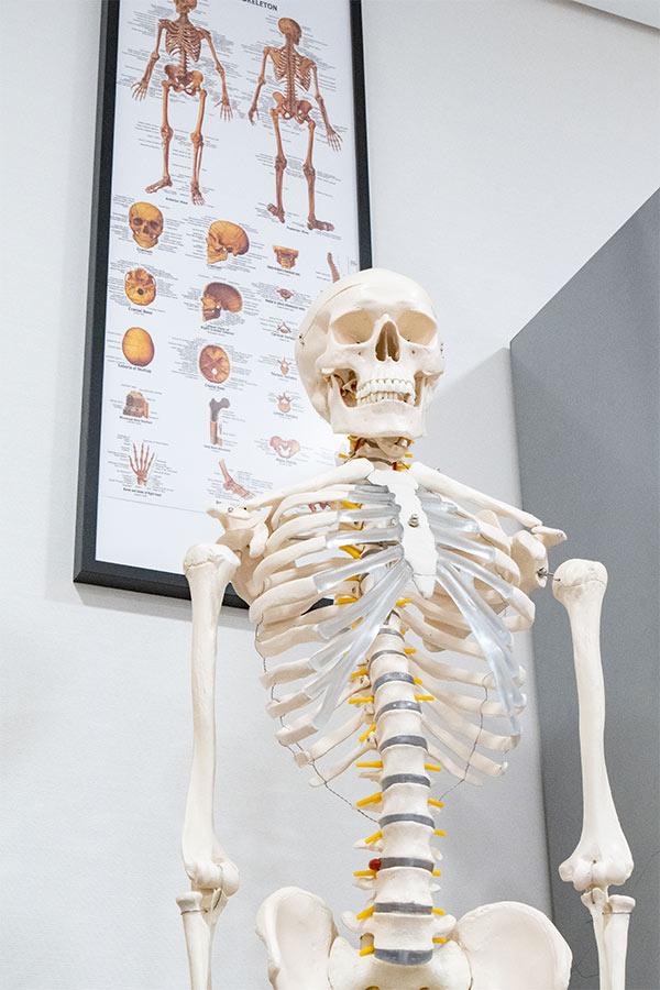 como-afecta-la-obesidad-a-los-huesos